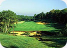 Pine Hill Golf Club accross from Pine Valley